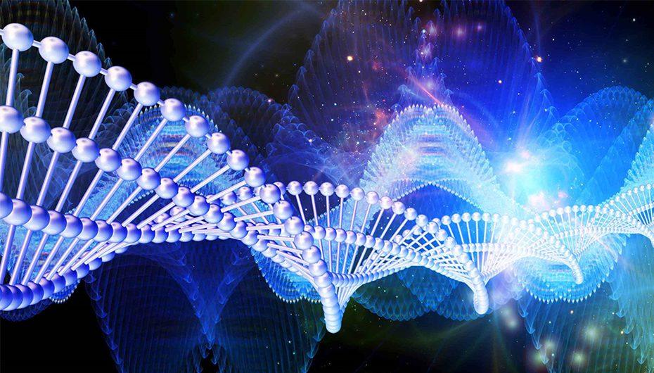 Expert de talie mondială în fizică medicală, invitat al Facultății de Bioinginerie Medicală