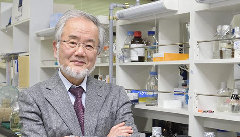 Nobelul pentru Medicina 2016 a fost castigat de cercetătorul japonez Yoshinori Ohsumi