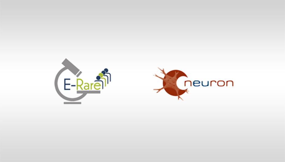 Apeluri de cercetare transnationala deschise: E-rare 3, Neuron-Cofund